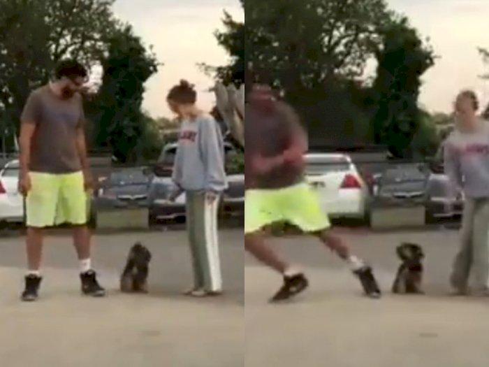 Video Dua Majikan Lari ke Arah Berlawanan, Reaksi Anjing Peliharaan Ini Menggemaskan