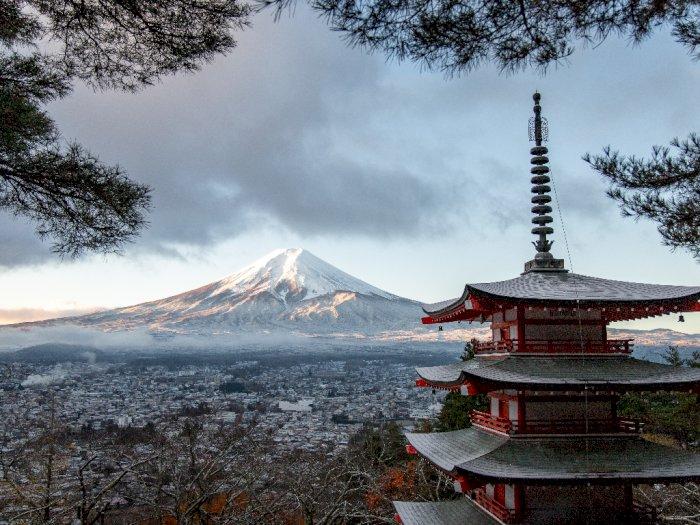 Kecoa Hingga Lipan Menjadi Hewan yang Dilindungi di Jepang!