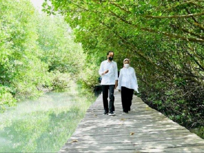 Presiden Jokowi dan Iriana Nikmati Suasana Hutan Mangrove di Bali